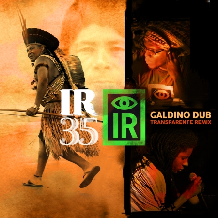 IR35_cover single